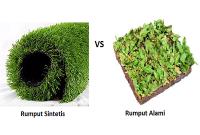 Rumput sintetis vs rumput alami